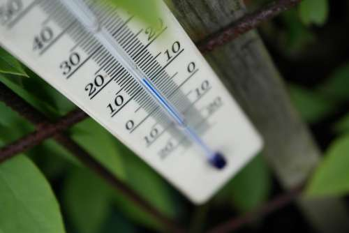 Thermometer Weather Mercury Temperature