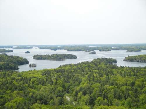 Thousand Island Island River Nature America Forest