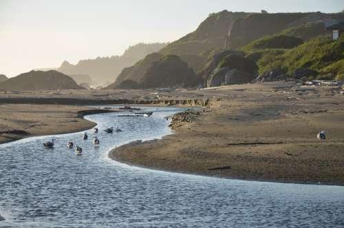 Tide Low Tide Ebb Ebb Tide Stream Ocean Water