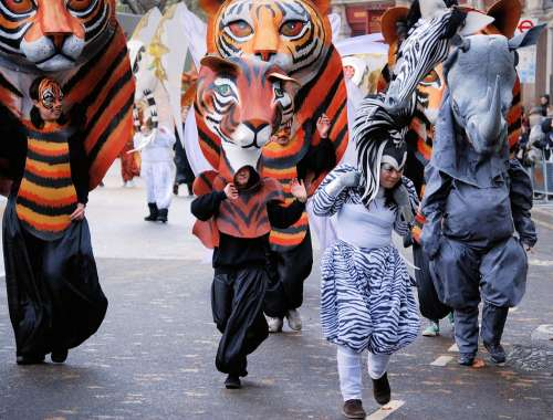 Tiger Mask Costume Parade Face Cat Face Carnival