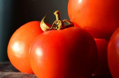 Tomatoes Vegetables Food Fresh Tomato Organic