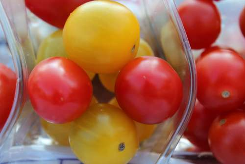 Tomatoes Food Vegetables Red Yellow Delicious