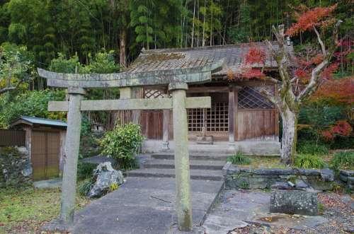 Torii Shrine Japan Japanese Temple Gate
