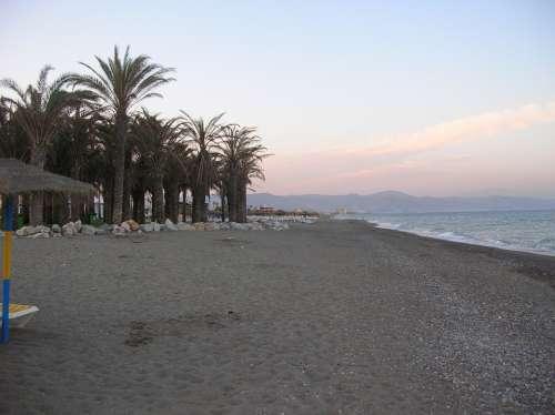 Torremolinos Beach Sea Spain City Palm Trees