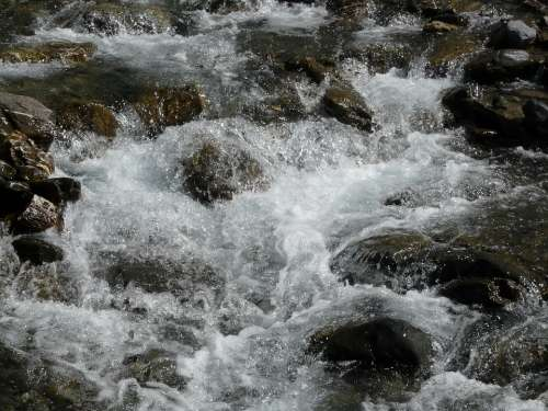 Torrent Water Mountain Nature Alps Rocks
