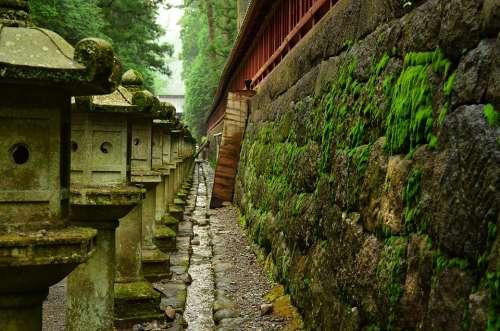 Toshogu Shrine Stone Lanterns Sunlight