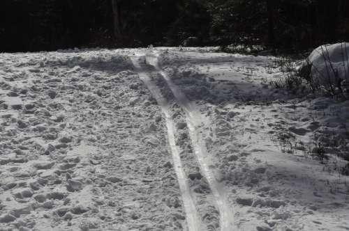Track Winter Skiing