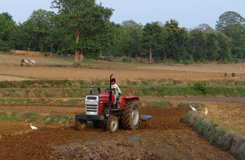 Tractor Tiller Tilling Equipment Agriculture