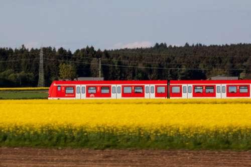 Traffic Transport S Bahn Red Train Mobile Travel