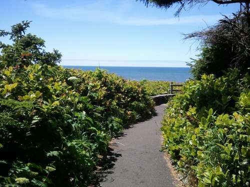 Trail Path Sea Scenic Nature Blue Outdoor