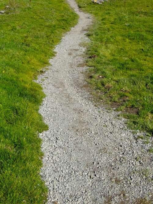 Trail Away Path Migratory Path Mountain Trail