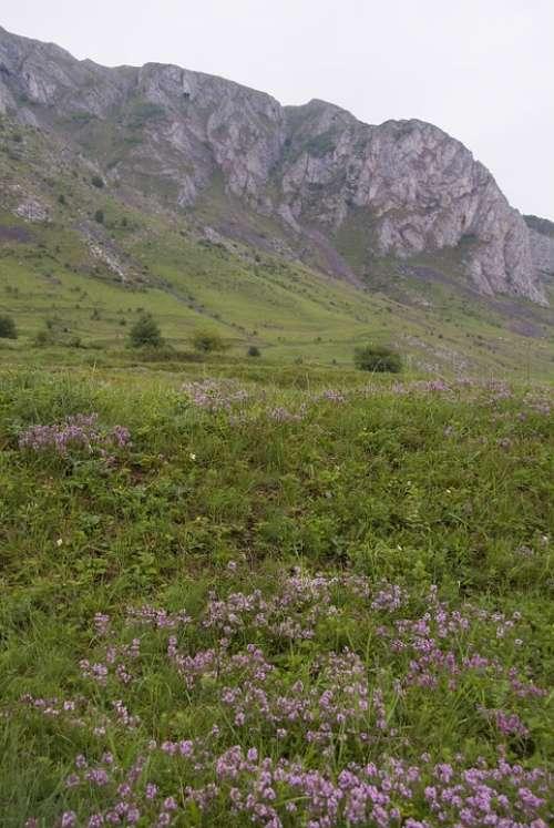 Transylvania Romania Landmark Landscape Mountain