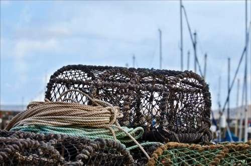 Trap Crab Pots Lobster Coastal Fishery Coast