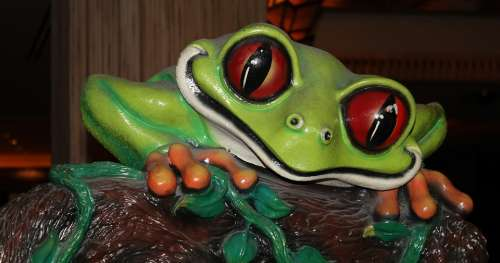 Tree Frog Sculpture Plastic Art Formed