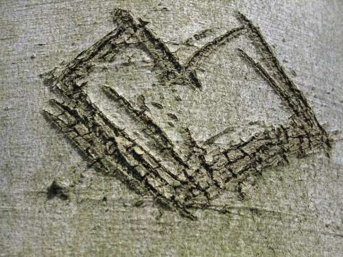Tree Bark Heart Engraved Love
