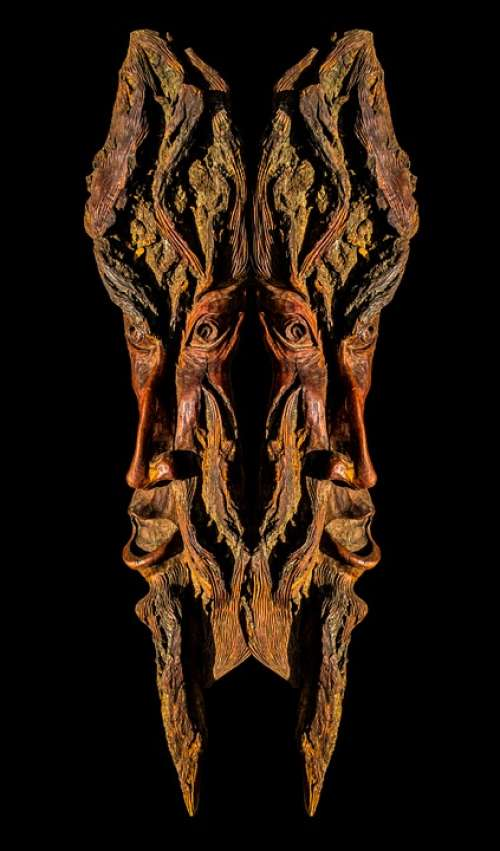 Tree Bark Bark Carving Wood Picture Portrait