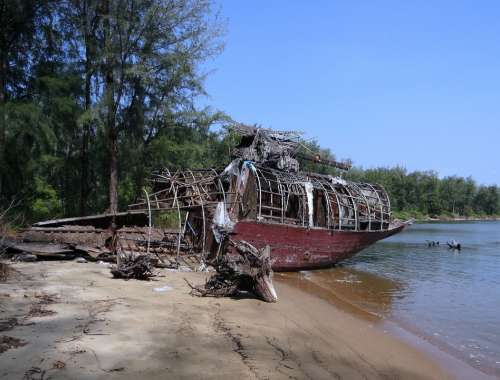 Tree Trunk Fallen Forest House-Boat Wrecked Karwar