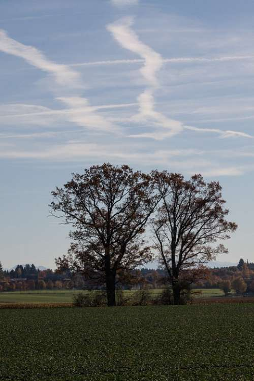 Trees Arable Field Cultivation Hair Dryer Contrail