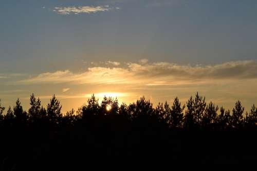 Trees Horizon Heaven Sun West Sunset Sky Dawn