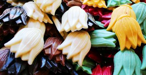 Tulips Chocolate Colorful Many Candy