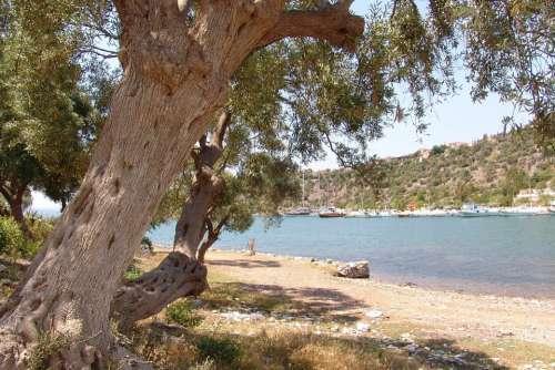 Turkey Jasos Landscape Vacations