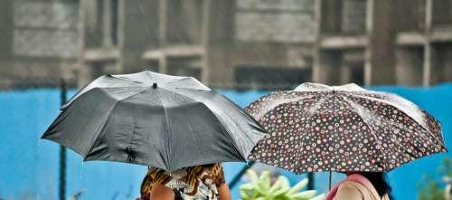 Umbrella Rain People Weather Protection Wet