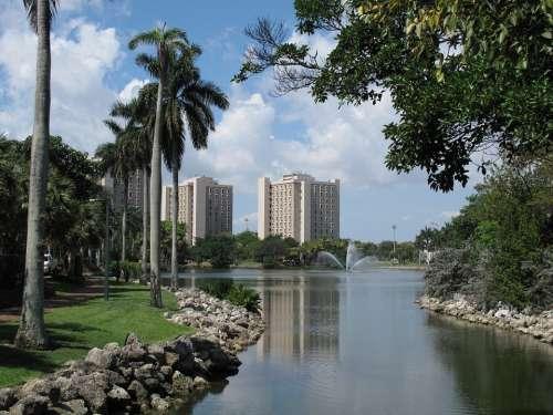 University Coral Cable Miami