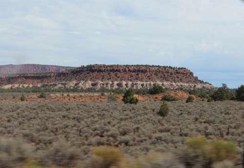 Usa Desert Arizona Landscape