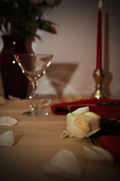Valentines Day Romance Love Holiday Celebration