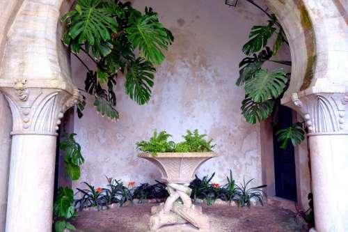 Vault Plant Stone Table Columnar