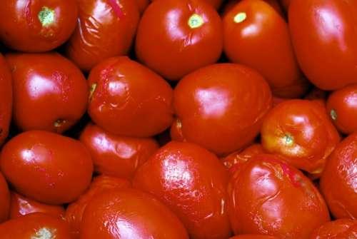Vegetable Tomato Vegetables Diet Healthy Food