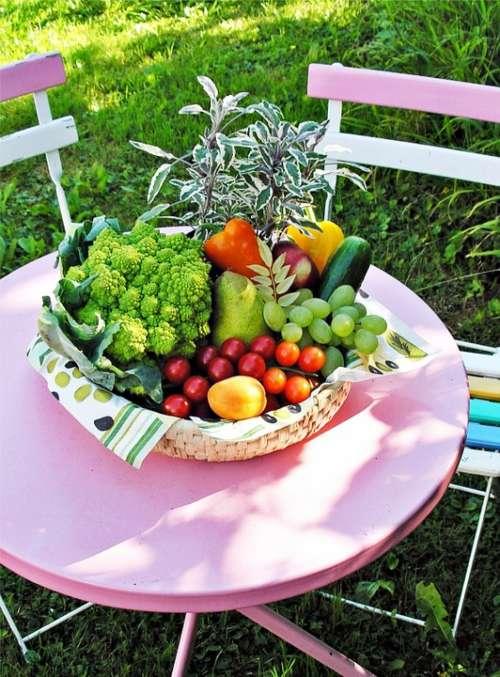 Vegetables Garden Table Summer Nature