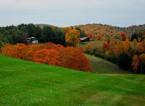 Vermont Fall New England Rural Forest Scene Woods