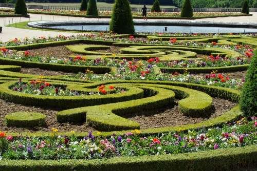 Versailles Garden Flowers Hedge Cis Fountain