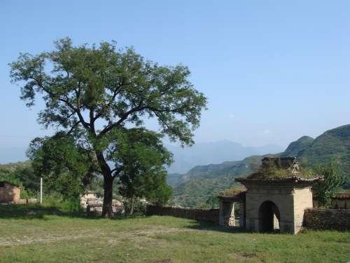 Village China Gate Ancient History Ruins Tree