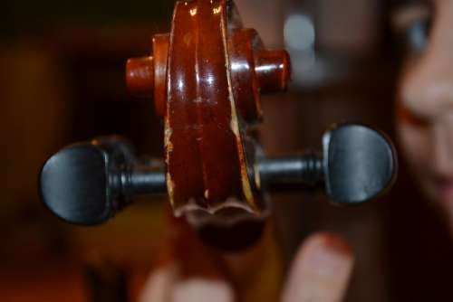 Violin Music Concert Stringed Instruments