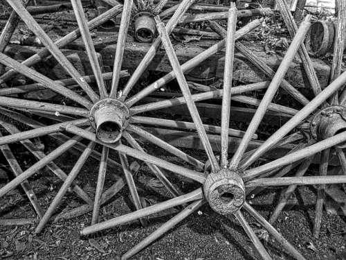 Wagon Wheels Spokes Vintage Aged Pioneer Cartwheel