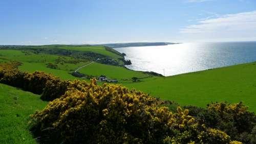 Wales Coast Flower Travel