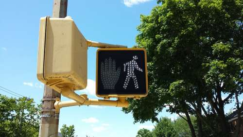 Walk Signal Sign Road Light Symbol Traffic