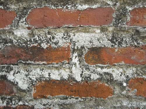 Wall Brick Cement Sand Red