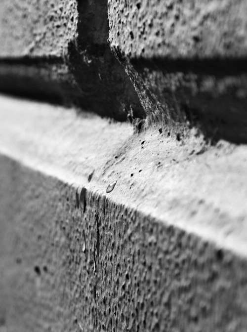 Wall Black And White Macro B W Photography White