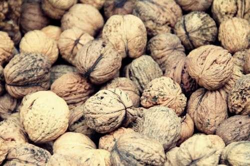 Walnut Walnuts Food Cake Nuts Eat Bake
