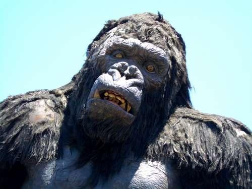 Warner Brothers King Kong Gorilla Movie Ape Monkey