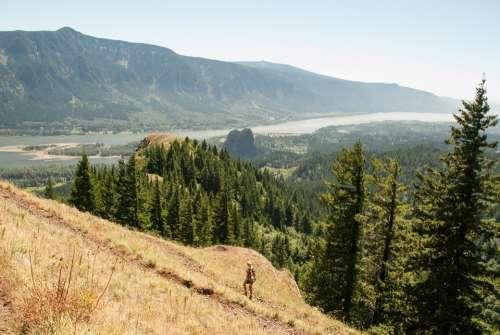 Washington State Oregon Hamilton Mountain