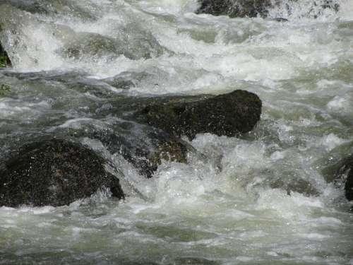Water Bach Stones Murmur Flowing