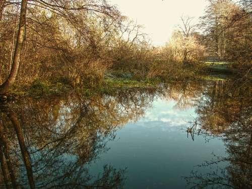 Water River Lake Mirroring