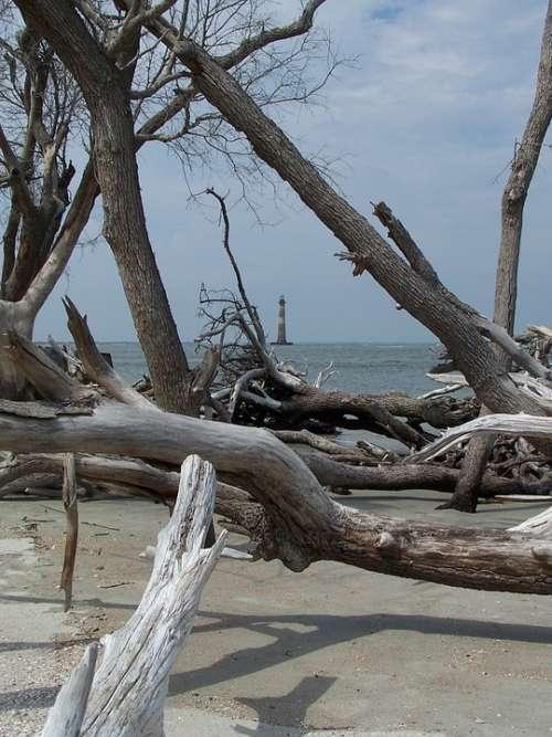 Water Ocean Beach Folly Beach Driftwood Lighthouse