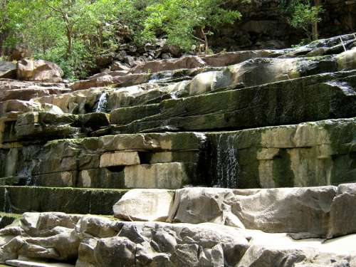 Water Rock Nature Clif India Jungle Forest