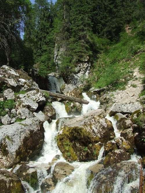 Waterfall Karst Stream Forest Nature Transylvania