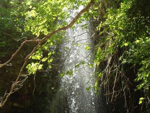 Waterfall Wild Green Nature Exotic Kythira Greece